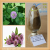 Pure Natural Red Clover Extract/Red clover isoflavones 20% Red Clover Extract