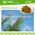 qualité alimentaire conservateur naturel extrait de romarin herbes