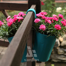 Hot selling new style hanging pot plant