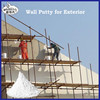 Exterior Finish Wall Putty Made in China