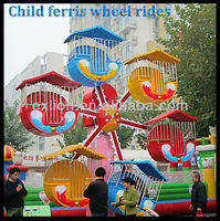 Low cost but good quality mini ferris wheel roller coaster supplier