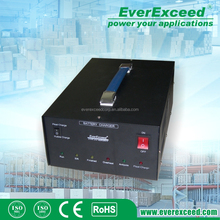 High Quality Wholesale EeverExceed wide voltage 12v solar car battery charger