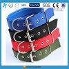 wholesale dog supplies dog collar making supplies foam nylon dog collar