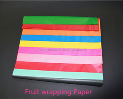 """30"""" x 40""""Pack Of 50 Sheets tissue paper /Assorted Rainbow Color Tissue Paper Bonus Pack"""