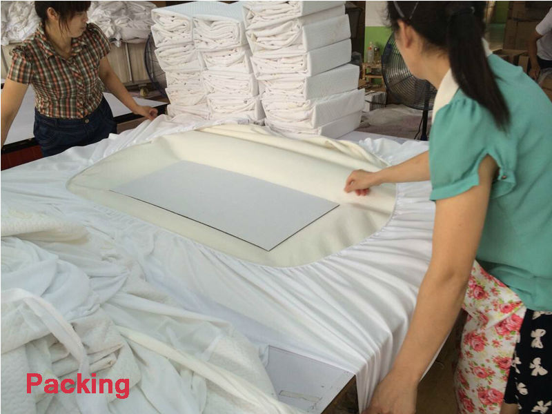 Good Quality Bed Bug Protection Mattress Covers Walmart Buy Enchanting Dust Mite Pillow Covers Walmart
