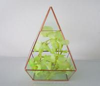 Geometric glass terrarium with gold metal frame