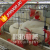 Trade Assurance 4 tiers 128 birds 160 birds poultry coop for bird