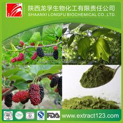 Mulberry Leaf Powder / Diabetes Herb Medicine / nutrition supplement
