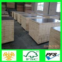 malaysia/Singapore market cheaper price poplar core one time press construction plywood