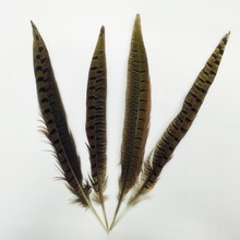 25-30cm dyed turquoise pheasant feather for carnival decoration