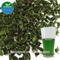 Fabricante de puro natural de alta calidad líquido de la clorofila, clorofila de cobre