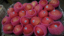 Red Color and Fresh Fuji Apple Fruits
