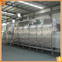 Effective Multifunctional Gas or Electrical Nut Roaster Peanut Roasting Machine for Peanut Processing Industry