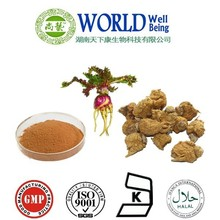 Best quality Sex Product Maca Extract Macaenes Powder/Maca Root Rxtract Powder/Maca Extract