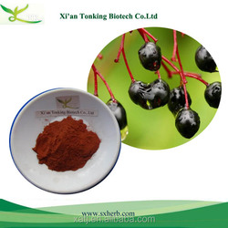 Hot selling free samples elderberry extract