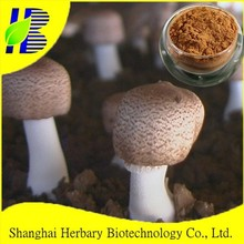 2015 Best food supplement Agaricus Blazei mushroom extract for anti-aging
