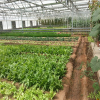 ISO Certification 100% Bayer High Quality aquaponics greenhouse solar greenhouse plastic sunroom