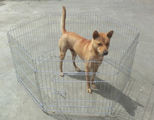 free stand folding temporary fencing for dogs