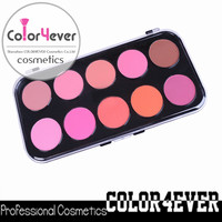 Wholesale brand name cosmetic face makeup for halloween pirate 10 color blush palette