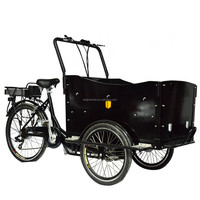 CE family bakfiets 3 wheel china electric cargo tricycle motorcycle with cargo box