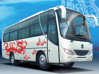 7.9M Luxury CNG Tourist Passenger Buses Bus