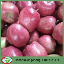 Hot-sell Red Delicious Apples