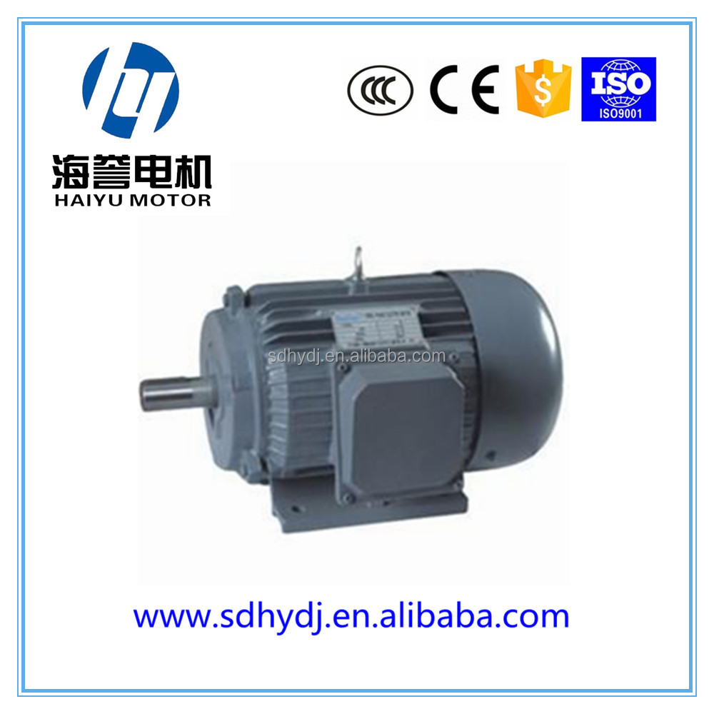 Direct Manufacture Electric Motor Low Rpm High Torque