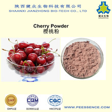 100% pure spray Dried Acerola Cherry fruit/powder cherry fruit juice powder