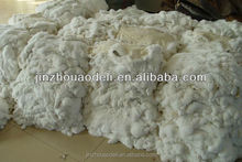 2015 new products factory direct price high quality rex rabbit fur skin material with competitive price