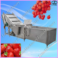 stainless steel commercial multifunctional vegetable foam washing and cleaning machine