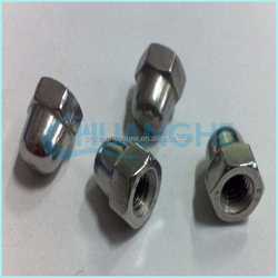 Top selling china wholesale best quality din1587 white zinc cap nut