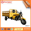 Chongqing Popular 250CC Lifan Engine Powered Strong Cargo Three Wheel Motorcycle