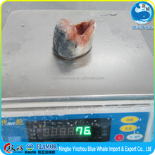 2015 Frozen fish Frozen spanish mackerel steak (Fat and tender)