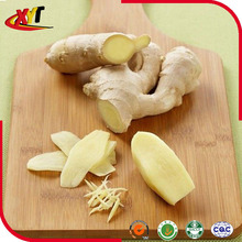 Galanga fresh ginger young ginger 2015 New Crop