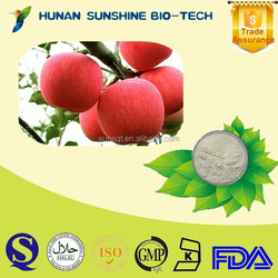 China Manufacture Health Supplements Food Additives Apple Powder