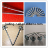BWG8-13 electro galvanized roofing nail with umbrella head