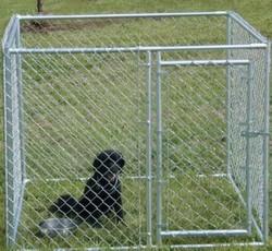 Galvanized Welded Mesh Dog Kennel Wholesale, unique dog kennels