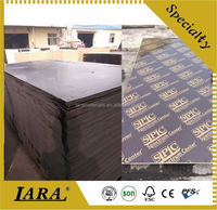 net formwork,marine plywood/for boats,shutter plywood 1220 2440 21