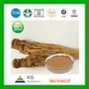 Manufacturer supply Pure Natural Dong Quai Root Extract,Dong Quai Extract
