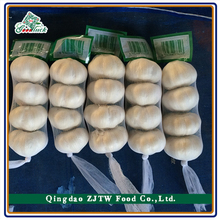 natural garlic wholesale garlic/garlic price/asian vegetables and fruits