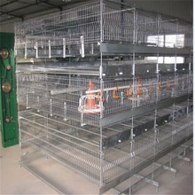 Battery Layer/Broiler Chicken Cage