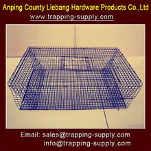 Hot New Products for 2015 Collapsible Live Bird Trap Cage