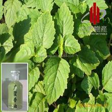 Hot sale 100% natural Patchouli oil