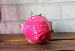 Realistic decorative artificial dragon fruit food model for shop display, fake dragon fruit