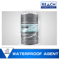 WB5015 High-performance Nano Penetrating waterproof sealant for sewage treatment tank anti chloride ion and weather ability