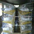 jaula de cría de conejo barato para la venta