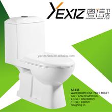 A3131 sanitaryware toilet hot design ceramic dual flush sanitaryware