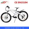 EAGLE electric bike wheel electric bike adult electric bike with CE EN15194
