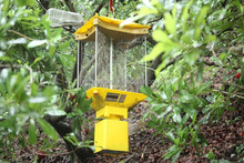TDB-2211 pests control, pest killer light, insect killer lamp for outdoor, fruit, tree, vegetable, livestock, seafood,