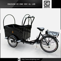 Elegant shape mid motor BRI-C01 family electric mobility tricycle